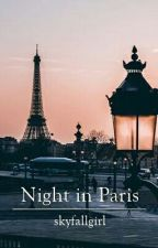 Night in Paris → LT by goldenbarbs