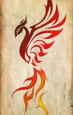 The Golden Trio and the Phoenix Flame by UnionJxGB