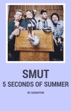 5sos • smut by ashuhton