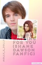 I'll be waiting for you (shane dawson fanfic) by Mxlly_13