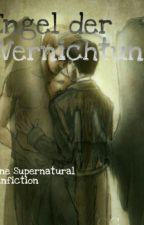 Engel Der Vernichtung (Supernatural FF) by hummingbirdmarie
