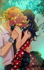 Esto Es ¿Amor?-Chat Noir Y Tu by Erika-chan4610