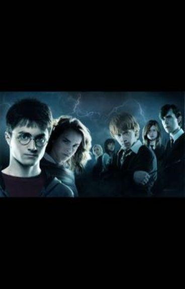 Love Potion (Harry x Reader x Draco x Ron)
