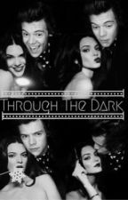 Through The Dark (Hendall) by narrysclan