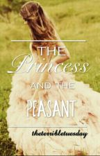 The Princess And The Peasant || on hold by theterribletuesday