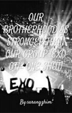OUR BROTHERHOOD IS STRONGER THAN OUR GROUP [EXO OT12 ONE SHOT] by sarangzhim