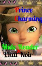 Prince Charming~ Chat Noir x Male!Reader by dannaybluu_