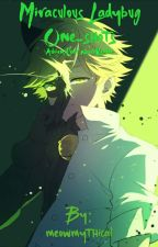 Miraculous Ladybug One-shots: (Adrien/Chat Noir x Reader) by meowmythical