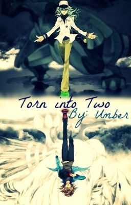 Torn into Two {Pokemon Fan-fic}