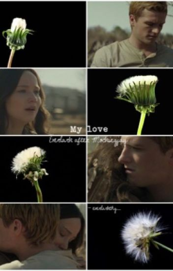 My love - Everlark after Mockingjay {Completed}
