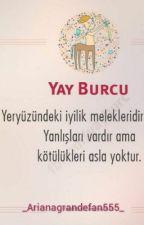Yay Burcu by _Arianagrandefan555_