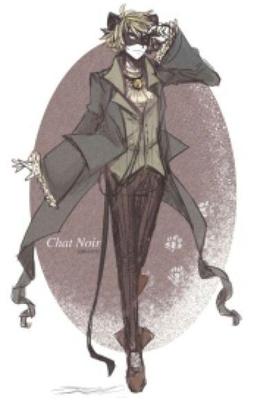 Chat Noir X Reader A Half Robot