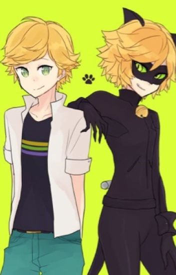 Love Square {Chat Noir x Reader} Complete!~