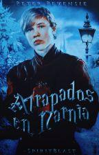Atrapados en Narnia (Peter Pevensie y tu) by SolCelesteBrisa