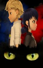 Soy un... ¿Gato? -Miraculous Ladybug- by Mary_FB