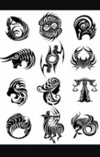 The Zodiac Signs  by allmyfriendsarebread