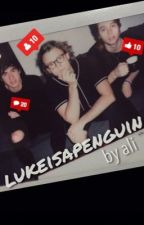 lukeisapenguin // lashton au by dancinginthestreet
