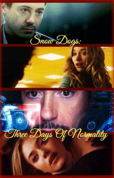 Snow Dogs: Three Days of Normality (An Iron Man/Pokemon Fiction) by maggiemayhem