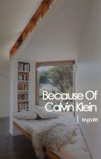 Because of Calvin Klein // kth by gibunee