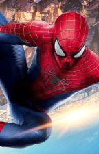 Percy Jackson: Spider-Man by JoshMeyers