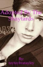Adopted by the shaytards *COMPLETED* by taytaybratayley
