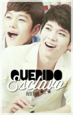 Querido Esclavo  (Woosoo Fanfic) by HyeWonCh20