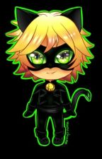 Chat Noir/ Adrien Agreste X OC / Reader by Buttersweet
