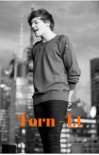 Torn - l.t by Enileme-R