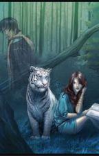 O segredo do tigre by IsabelySantos5