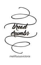 bread crumbs by hazyplaces