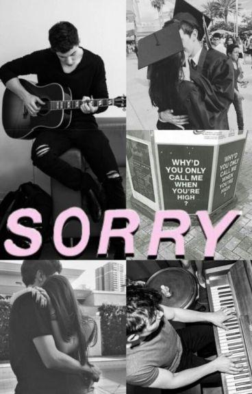 Sorry. [Shawn Mendes y Tú.]