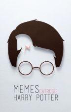 Mèmes Harry Potter by catrosie