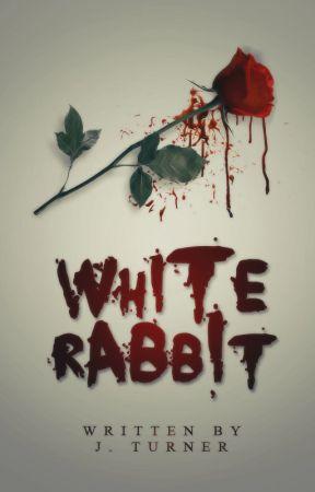 White Rabbit by LunaForgotten