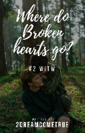 Where Do Broken Hearts Go? ✅ - Walking In The Wind Sequel by 2dreamcometrue