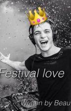 Festival love (English Martin Garrix fanfiction) by BeauxGarrix