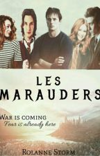 Les Maraudeurs by RolanneFiction
