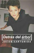 Detrás del árbol ➳ Jacob Sartorius [Sin Editar] by wastesaway