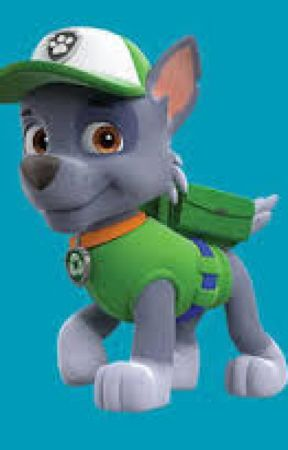 Paw Patrol Rocky S Depression Completed Getting To
