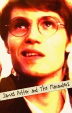 James Potter and The Marauders. by sarahsmiles44