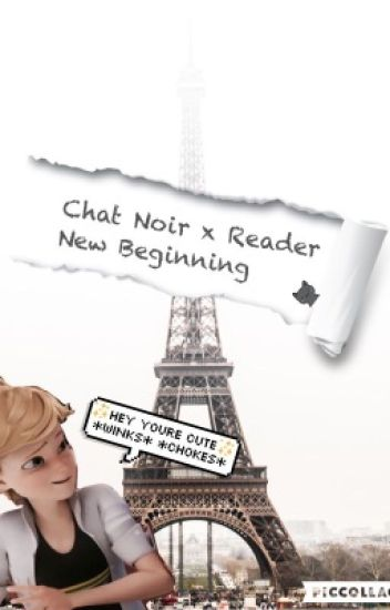 Chat Noir x Reader - New Beginning