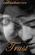 Trust - A German Zayn Malik Story by zmfanforever