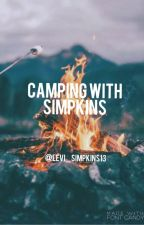 Camping With Simpkins by delapres