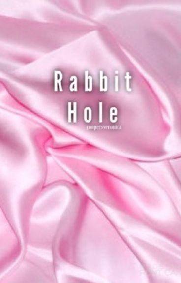 Rabbit Hole // Stiles Stilinski