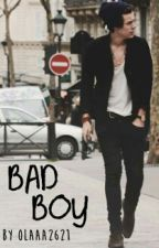Bad Boy||h.s (book two)✔ by alessvx