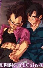 Vegeta X Goku by tylerrosegrace