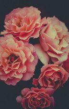 Un Tierno Amor (Ben X Sally)[FINALIZADO] by bonniegamer333