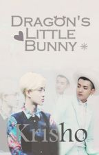 Dragon's Little Bunny by KrisHo_100_World