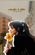 Camila/You Imagines by sparklingcabello