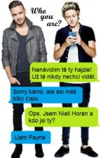 Who are you?- Niam texting✅ by 2015KT2015