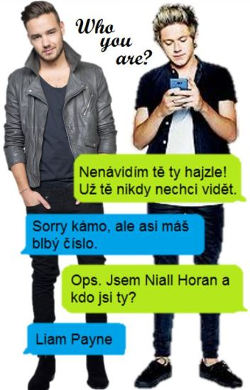 Who are you?- Niam texting✅
